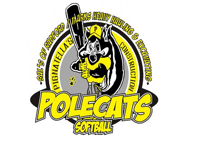 POLE CATS/LUMBER CO -- BLUEFIELD, VA