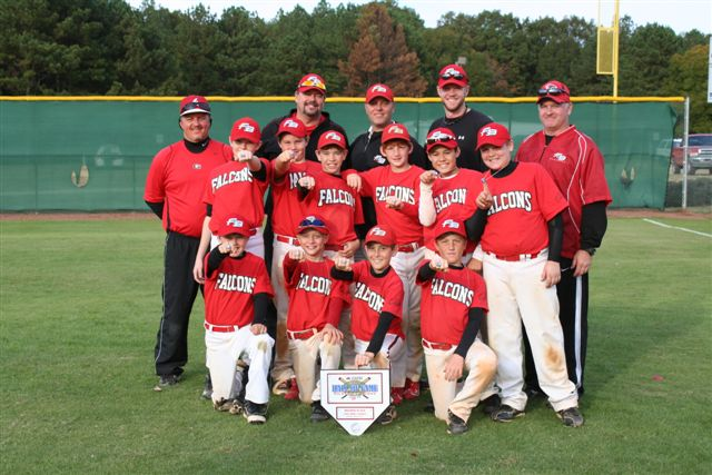 FLOWERY BRANCH FALCONS BLACK -- FLOWERY BRANCH, GA