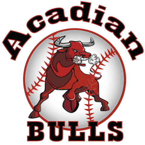 ACADIAN BULLS -- LAFAYETTE, LA